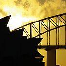 Sydney by Phoenix-Appeal