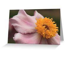 Advertising Pollen Greeting Card