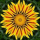 Flowerkaleidoscope by RosiLorz
