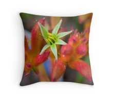 Orange Kangaroos Paw Throw Pillow