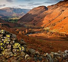 Views down to Borrowdale by Shaun Whiteman