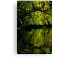 Using Nikon D70S - Autumn Reflections - St. James Park, London Canvas Print