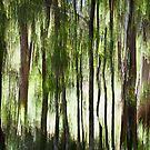 Bush lands #03 by LouD