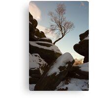 Brimham Rocks. Canvas Print