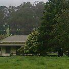 Marysville 2010 by adgray
