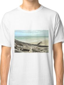 Stump at Lover's Key Classic T-Shirt