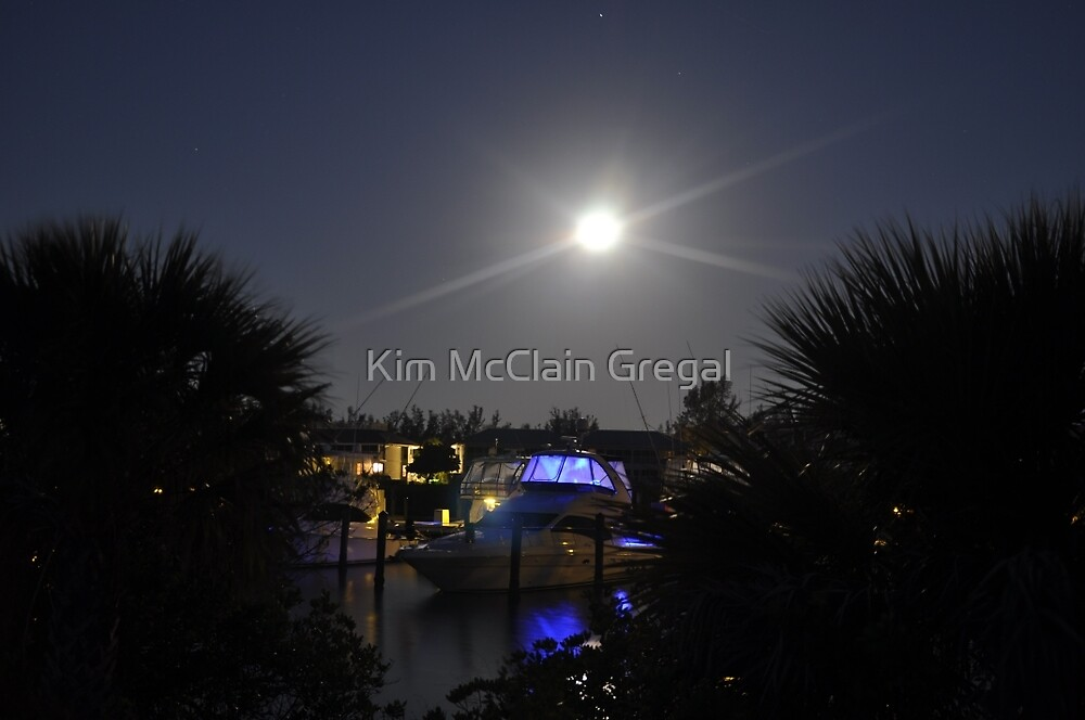 Super Moon, As Is by Kim McClain Gregal
