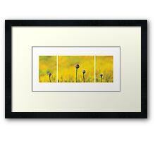 Yellow Garden Framed Print