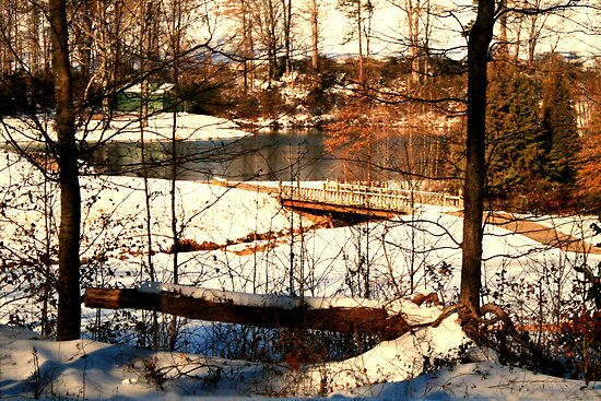 Hammer's Glen Snowy Pond by Chelei