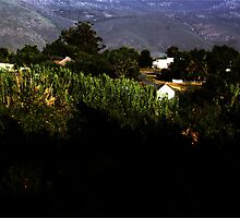 Tulbach Valley RZA, Sunset by Rodney Fagan