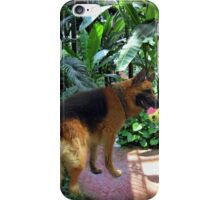 GERMAN SHEPARD PLAYS WITH BALL PICTURE-PILLOW-TOTE BAG-JOURNAL ECT. iPhone Case/Skin