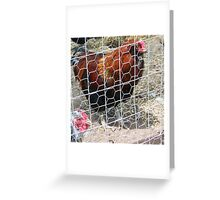 CONTEMPLATING ESCAPE II Greeting Card