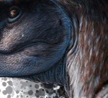 Dreadful Lizard - Gorgosaurus Sticker