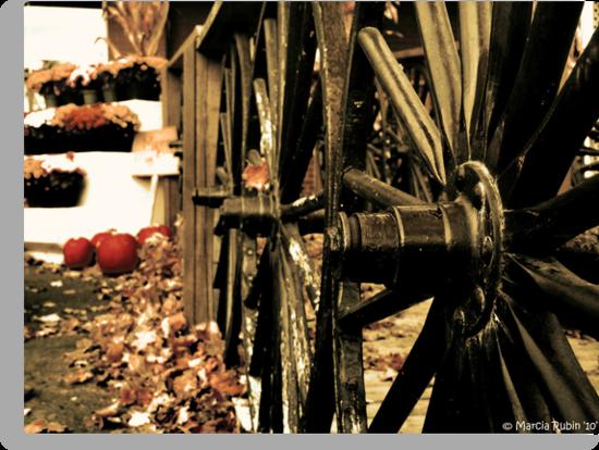 Wagon Wheels by Marcia Rubin