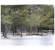 Country Fences Poster