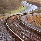 Dart Valley Railway Track, no.2 by Mike  Waldron