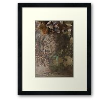 Decaying Decadence Framed Print