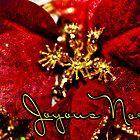 Joyous Noel  by Selina Ryles