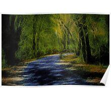 Forest Matrix Poster