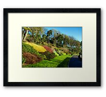 Winter Colours ~ Langmoor-Lister Gardens Framed Print
