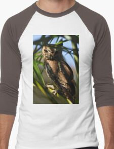Eastern Screech Owl, As Is Men's Baseball ¾ T-Shirt
