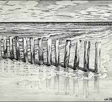 THE NORTH SEA BEACH - PEN DRAWING by RainbowArt
