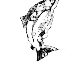 Chinook Salmon by Sally Griffin