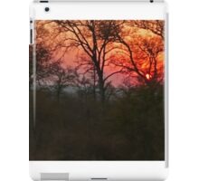 Sunset, South Africa iPad Case/Skin