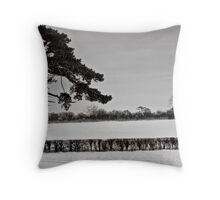 Slices of winter # 3 Throw Pillow