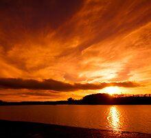 Golden Sunset over Ardingly Reservoir by Eddie Howland