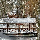 Middlesex Canal in Winter by Monica M. Scanlan