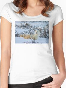 Yoga Bear seated silly Women's Fitted Scoop T-Shirt