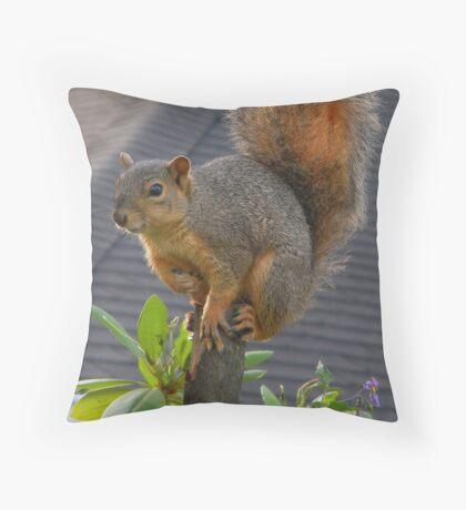Tree Topper Throw Pillow