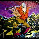 Ninja by Troy Slater