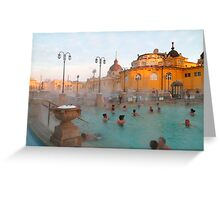 Széchenyi medicinal baths III Greeting Card