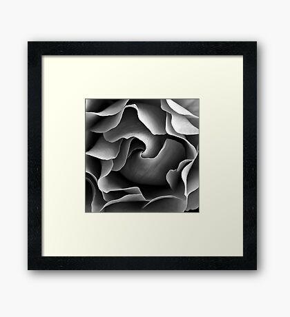 Textured Rose Framed Print