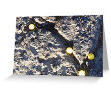 01-15-11  The Social Order of Lemonheads Greeting Card
