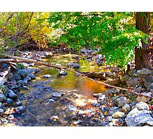 Trickled Coloured Waters  of Fall Photographic Print