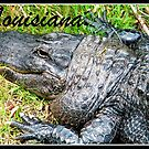 Louisiana Gator by BShirey