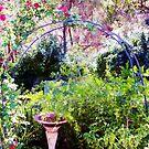 Rose arch by Wilhelmina