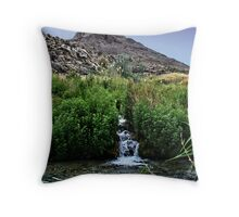 Secret Of The Mountain Throw Pillow
