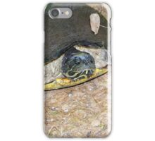 Mrs Turtle iPhone Case/Skin