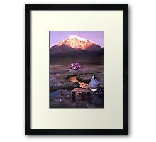 M Blackwell - Who's Watching You Swim? Framed Print