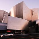 The Walt Disney Concert Hall by leungnyc