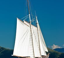"""Windjammer"" by Tim Wootton"