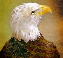 American Eagle by Savannah Gibbs