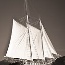 """""""Windjammer""""- Toned by Tim Wootton"""