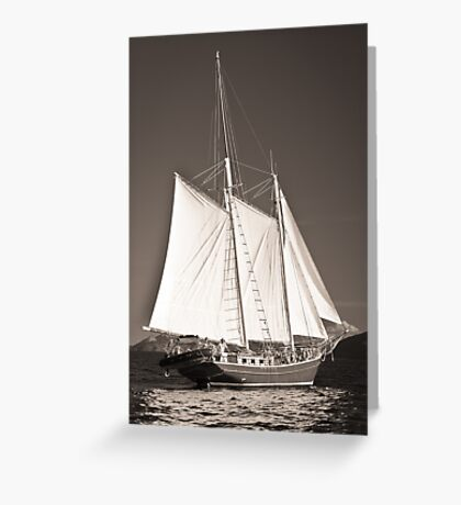 """Windjammer""- Toned Greeting Card"