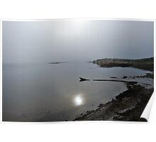 Abbot's Lagoon  •  Point Pierce Road  •  Tomales Bay Poster