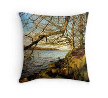 """WATERS EDGE"" Throw Pillow"